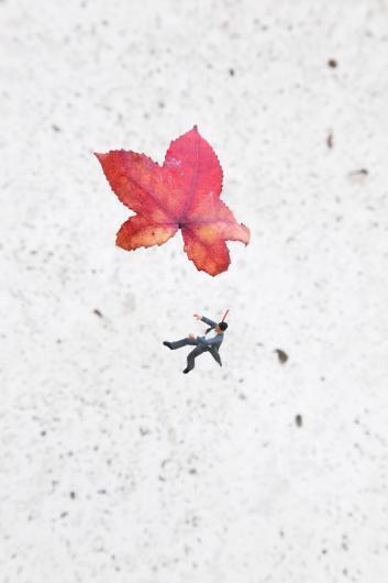 Slinkachu:Fall