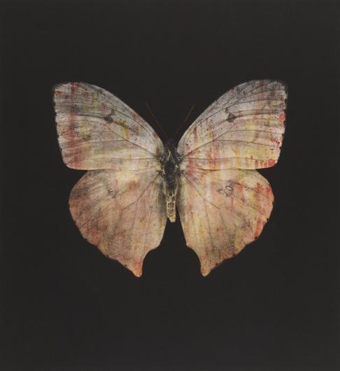 Damien Hirst:The Souls on Jacob's Ladder Take Their Flight (Grey Butterfly)