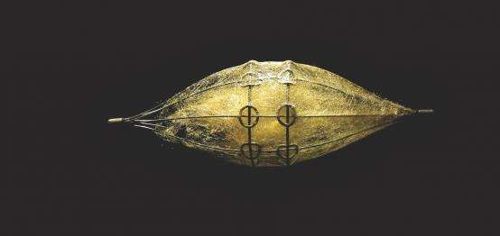 David Roux-Fouillet:Ornamental Fauna: Ear Piece