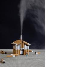 Slinkachu:Sustainable Living
