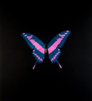 Damien Hirst:The Souls on Jacob's Ladder Take Their Flight (Blue with Pink/Yellow)
